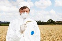 Cientista examinando grãos no campo de cultivo — Fotografia de Stock
