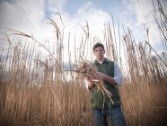 Farmer holding Miscanthus crop, or Elephant grass, on biomass farm at harvest time — Stock Photo