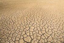 Вид сухой треснувший грязи текстуры в уменьшении перспективы — стоковое фото