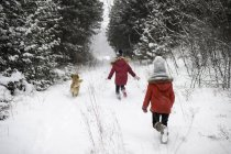 Rear view of running girls exploring snowy forest with dog — Stock Photo