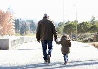 Vista posteriore del nonno e della figlia che camminano nel parco — Foto stock