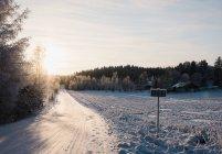 Route rurale couverte de neige au soleil — Photo de stock