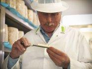 Fabricante de queso de cabeza toma muestra de queso azul en la fábrica de fabricación de queso - foto de stock