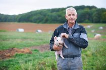 Фермер держит поросёнка в поле — стоковое фото