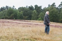 Senior man standing in meadow — Stock Photo