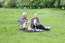 Старшая пара пьет вино на пикнике — стоковое фото