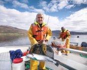 Портрет рыбака со свежепойманным лососем в сети на озере шотландской фермы лосося — стоковое фото