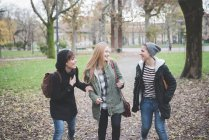 Três irmãs conversando no parque — Fotografia de Stock