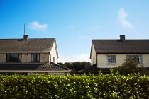 Two detached houses behind hedge — Stock Photo