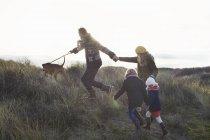 Середині дорослих кілька прогулюються в піщані дюни з їх сина, дочку і собака — стокове фото