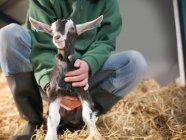 Zugeschnittenes Bild der Worker holding Kind Ziege auf Bauernhof — Stockfoto