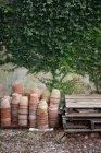 Теракотова рослин горщиків стіною з Плюща — стокове фото
