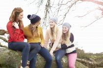 Quattro adolescenti che si siedono in cima tronco d'albero — Foto stock
