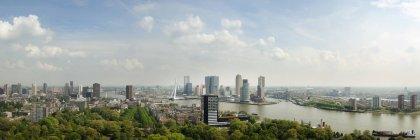 Rotterdam city skyline with green trees, Netherlands — Stock Photo