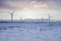 Turbinas eólicas na paisagem arenosa com céu nublado — Fotografia de Stock
