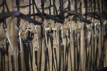 Fila de bridles pendurados em estábulos — Fotografia de Stock