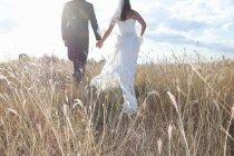 Новобрачная пара Холдинг руки в траве — стоковое фото