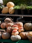 Vegetable market stall — Stock Photo
