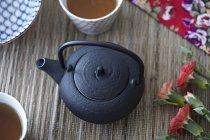 Закри подання vintage чайник — стокове фото
