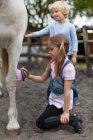 Enfants brossant le cheval, mise au point sélective — Photo de stock