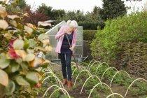 Зрелая женщина, работающих в огороде — стоковое фото