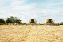 Harvesters working in crop field at daytime — Stock Photo
