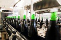 Machine de mise en bouteille en cave à vin — Photo de stock