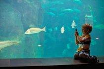 Boy taking pictures of fish in aquarium, selective focus — Stock Photo