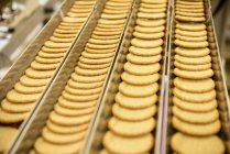 Freshly made biscuits on production line — Stock Photo