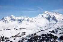 Arbres et pistes de ski — Photo de stock
