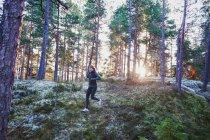 Donna in esecuzione nella foresta in inverno — Foto stock