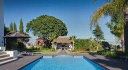 Piscine arrière-cour avec verdure luxuriante en plein soleil — Photo de stock