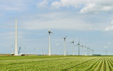 Wind turbines on green field under blue cloudy sky — Stock Photo