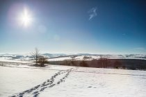 Fußabdrücke in Schneelandschaft — Stockfoto