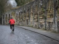Rear view of man riding on bicycle — Stock Photo