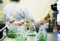 Tubos de ensayo de cultivos vegetales en laboratorio con persona a fondo - foto de stock