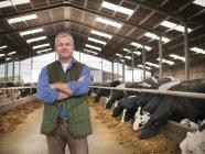 Porträt von Bauer mit im Stall mit Kühen auf Milchviehbetrieb verschränkten Armen — Stockfoto