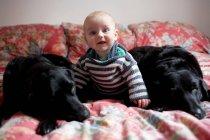 Няня с собаками на диване — стоковое фото