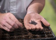 Close up partial view of worker in greenhouse planting seeds — Stock Photo