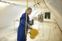 Female worker cleaning equipment in underground tunnel nursery, London, UK — Stock Photo