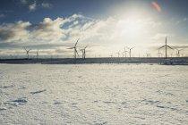 Turbinas eólicas na paisagem arenosa — Fotografia de Stock
