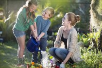 Brother and sisters watering plants on allotment — Stock Photo