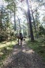 Женщина катается на велосипеде по лесной дорожке с корзинами — стоковое фото