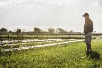 Full length side view of man standing in farm field looking away — Stock Photo