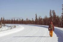 Людину, що йде на снігу охоплює дороги, Фербенкса, Аляска — стокове фото