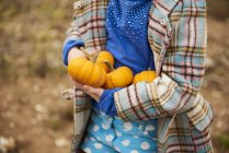 Cropped image of child holding ripe small pumpkins for halloween — Stock Photo