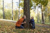 Батько і син грає в нижній частині дерева — стокове фото