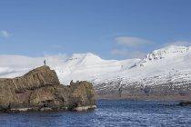 Uomo ai margini dell'isolotto, Islanda — Foto stock
