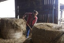 Man in barn shovelling hay — Stock Photo