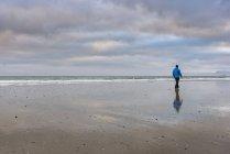 Uomo che cammina lungo la spiaggia, vista posteriore, Westfjords, Islanda — Foto stock